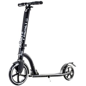 frenzy-fr230-recreational-scooter