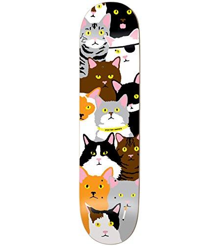 Best skateboard deck for beginners