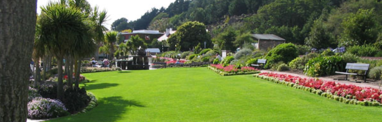 lawn in th park