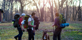 3 men hiking with dog