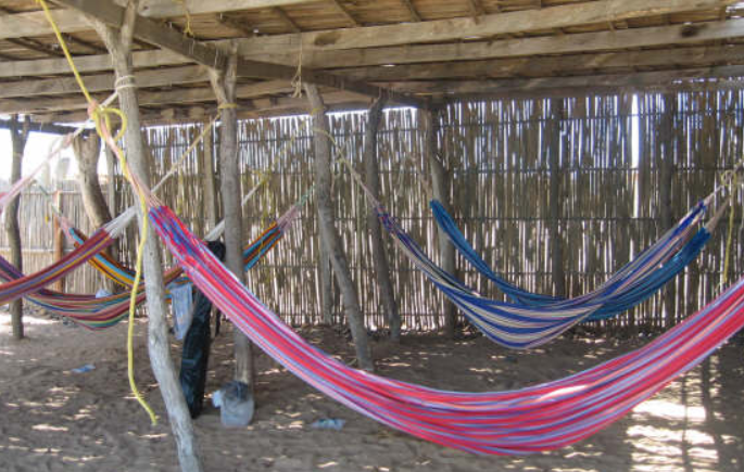 Blue and Red hammock display