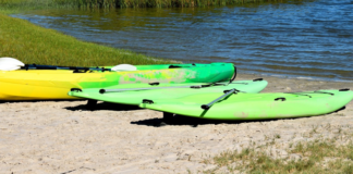 Green Paddle boards on the bay