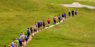 Group of people going hiking