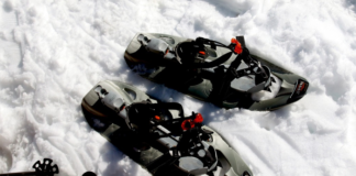 Pair of snowshoe